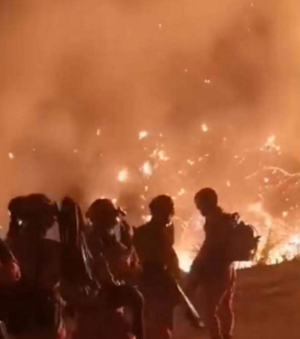 同安某山上突发大火